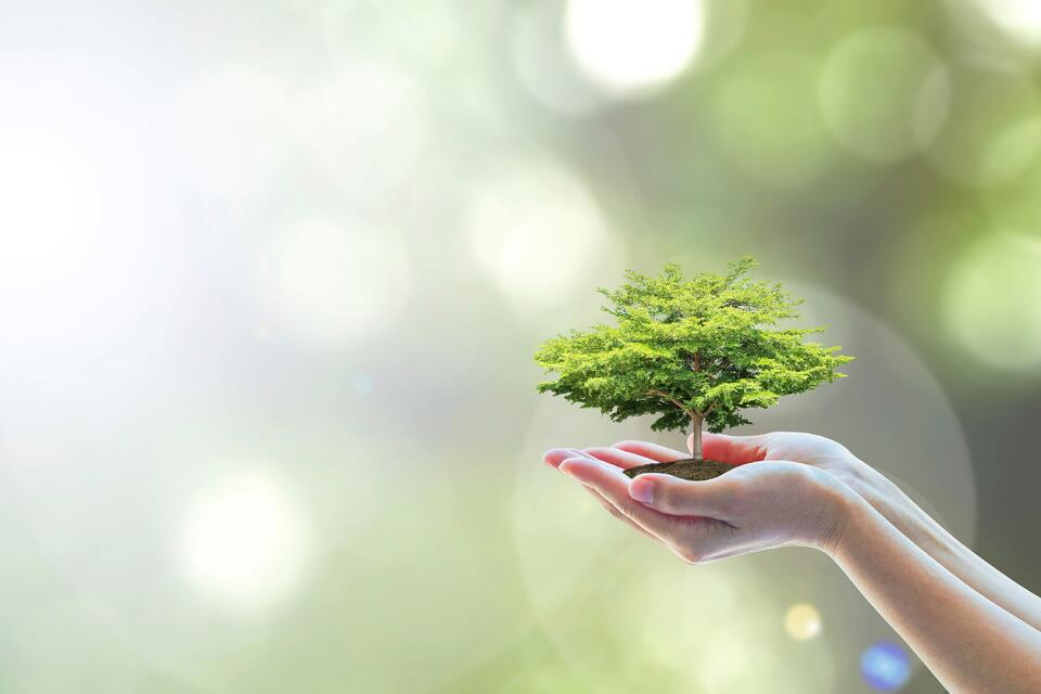 Give a little: CSR for the small business
